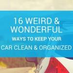 16 Weird & Wonderful Ways to Keep Your Car Clean & Organized (2017 Update)