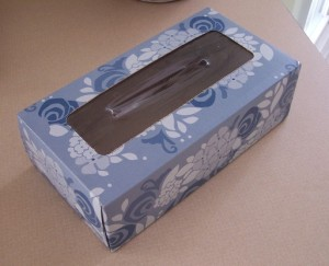 Empty Facial Tissue Box