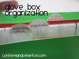 Car Glove Box Organization