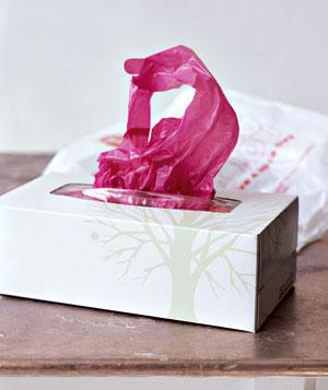 tissue box with grocery bags for car